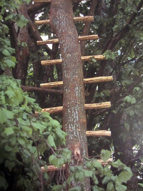 Treehouseladder480