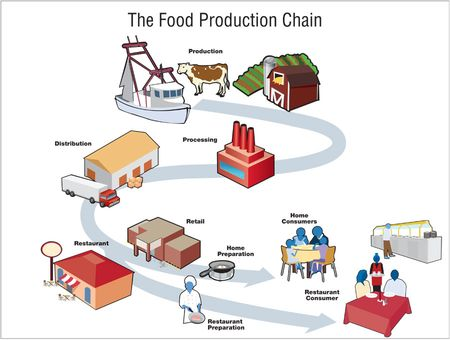 Food_production_chain_900px