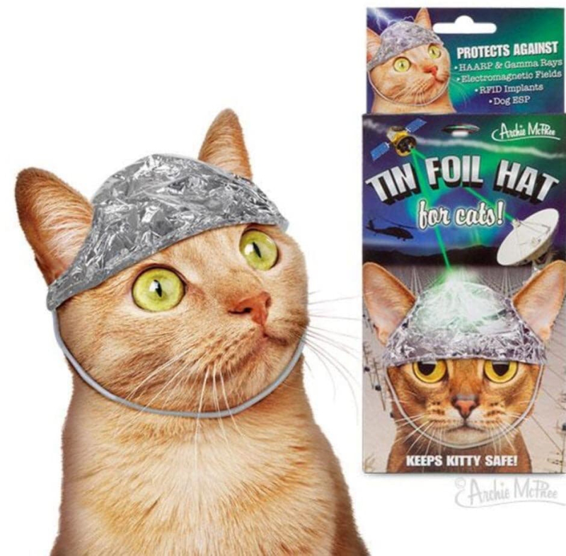 Tinfoil hat kitty