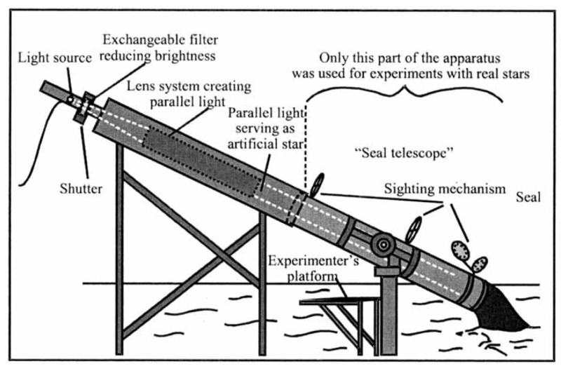 Sealscope